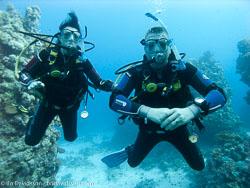BD-090405-St-Johns-4052636-Homo-sapiens.-Linnaeus.-1758-[Diver].jpg